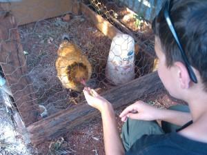 me feeding Rosie