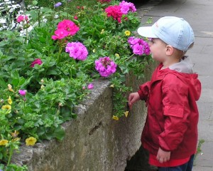 Riley smelling flowers